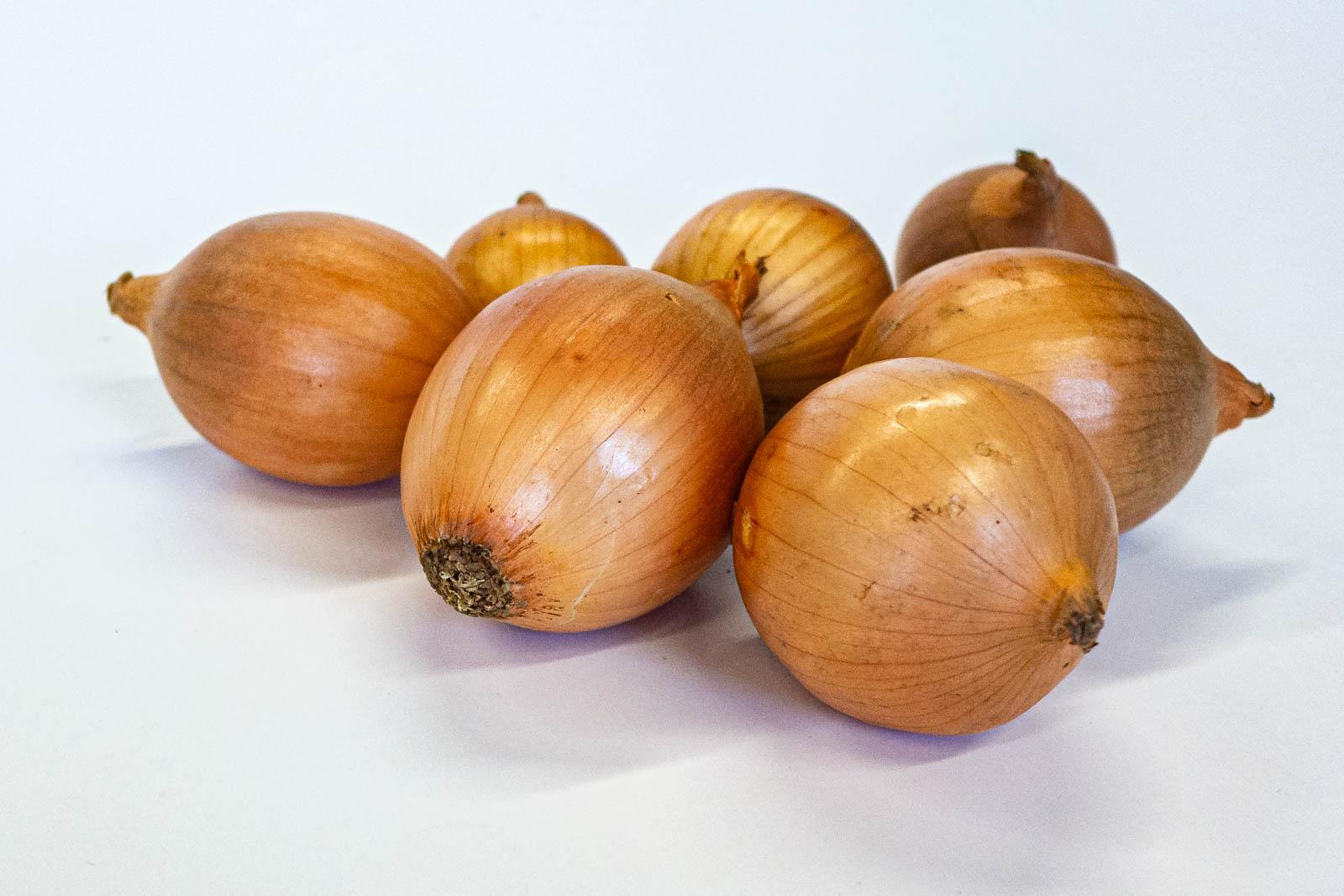 Saucenzwiebeln